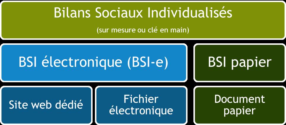 Les différents types de bilans sociaux individualisés